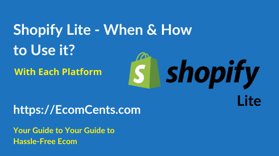 How to Use Shopify Lite Plan