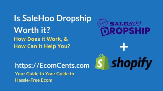SaleHoo Dropship Review - Is it Worth it?