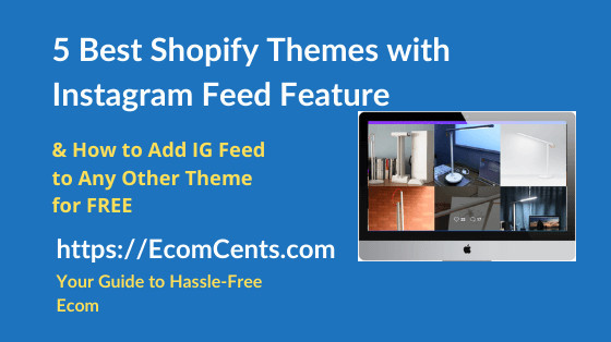 Best Shopify Themes with Instagram Feed