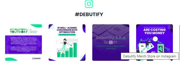Debutify Instagram Feed on Shopify