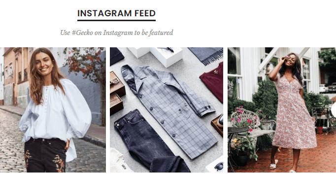 Gecko Shopify Theme Instagram Feed